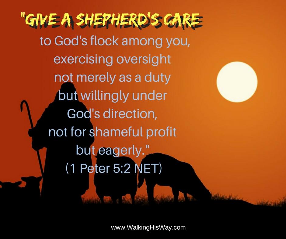 dec-16-1ped-5-2-shepherds-care