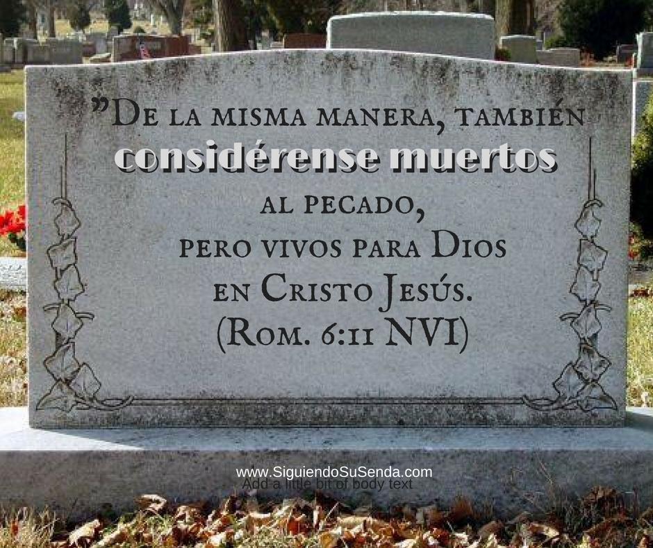 Ago 24 Ro6.11 Muertos