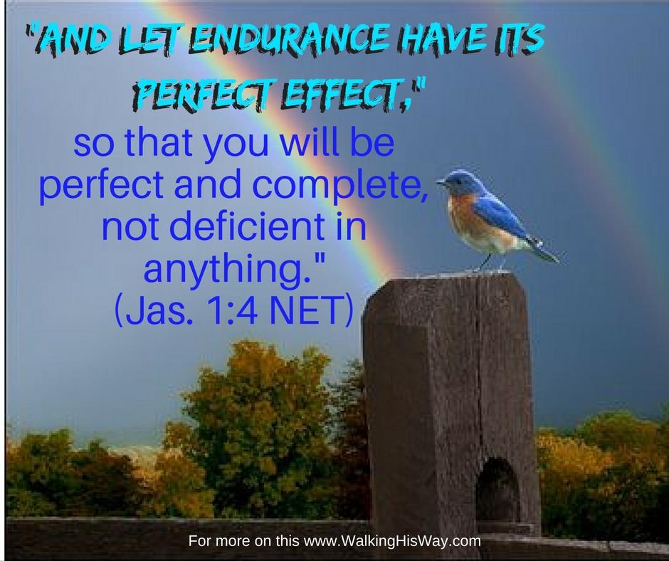 oct-26-jas1-4-endurance